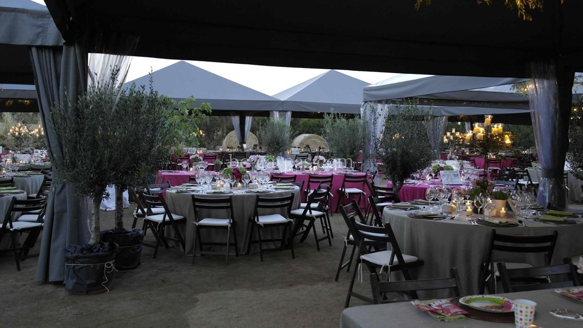 Alquiler de carpas para bodas 6